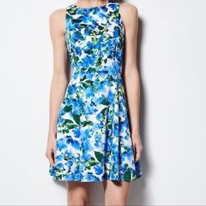 Milly Fit & Flare Blue Floral Print Dress
